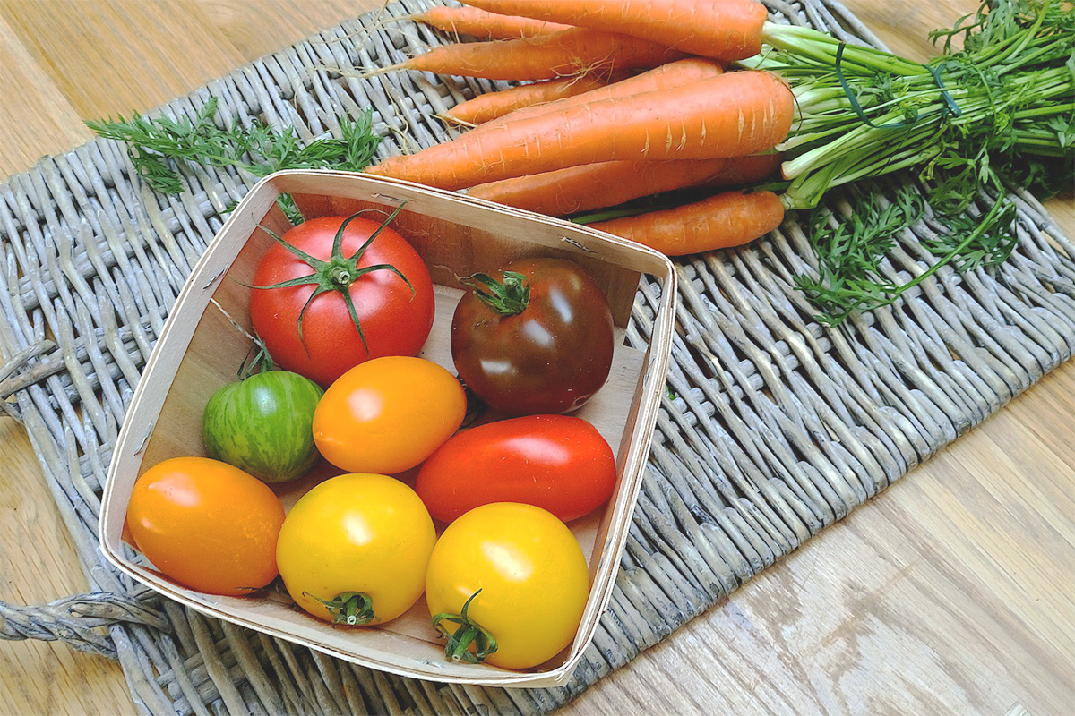野菜の常温・冷蔵の保存分け